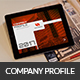 Interactive Company Profile - GraphicRiver Item for Sale