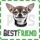 BestFriend - Pet Shop PSD Template - ThemeForest Item for Sale