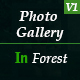 Photo Gallery In Forest - VideoHive Item for Sale