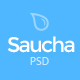 Saucha - Marketing & Seo PSD Template Nulled