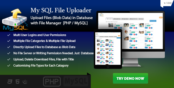 MySQL Blob Uploader - File Upload to Database PHP - Blob File Server - CodeCanyon Item for Sale
