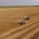 Drone Flying Around Two Smoking Combine Are Harvesting Wheat On Golden Field In Summer Day - VideoHive Item for Sale
