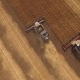 Three Modern Harvesters Are Working On Agricultural Grounds - VideoHive Item for Sale