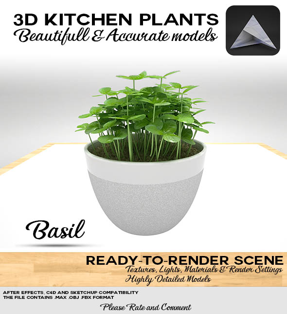 Basil Pot 3D - 3DOcean Item for Sale