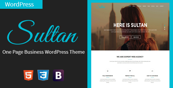 Sultan – One Page Business WordPress Theme
