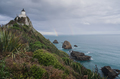 Nugget point, new zealand - PhotoDune Item for Sale