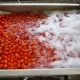 Automatic Line For The Production Of Tomato Paste - VideoHive Item for Sale