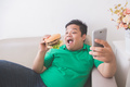 obese person eating hamburger while using mobile phone - PhotoDune Item for Sale