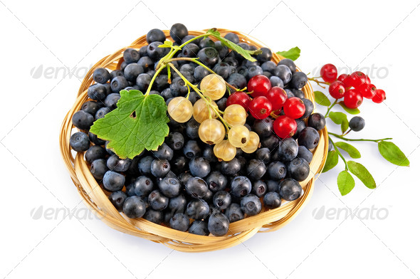 Blueberries with red and white currants - Stock Photo - Images
