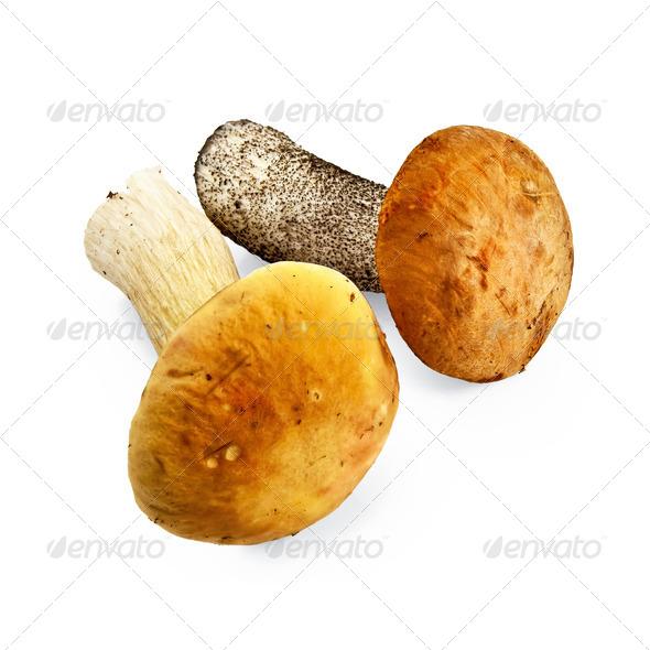 Mushroom orange-cap boletus and cep - Stock Photo - Images