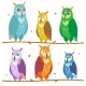 Cute Colorful Owl Set On The Branch. Vector - GraphicRiver Item for Sale