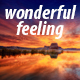 Wonderful Feeling - AudioJungle Item for Sale
