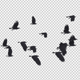 22 Black Birds Flying Over Screen II