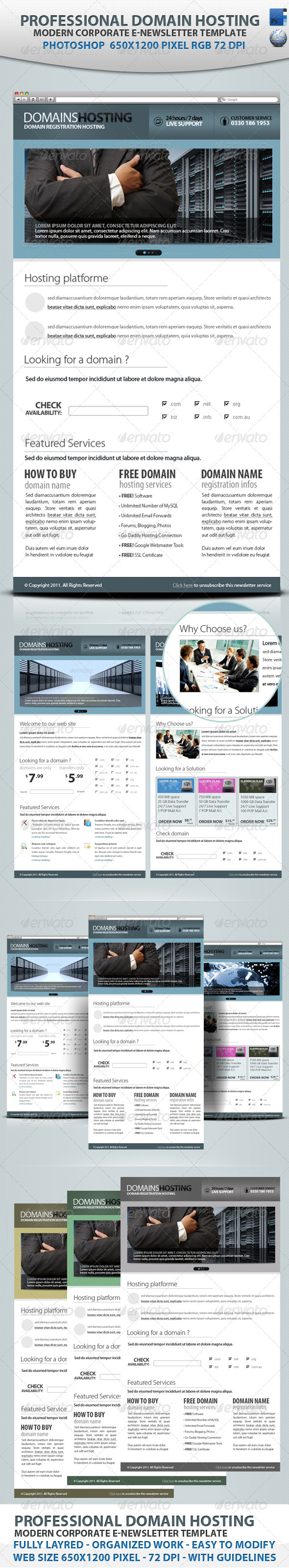 Professional Domain Hosting E-newsletters - E-newsletters Web Elements