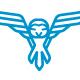Owl Flight Logo