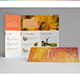 Eco Nature 3Fold Brochure - GraphicRiver Item for Sale