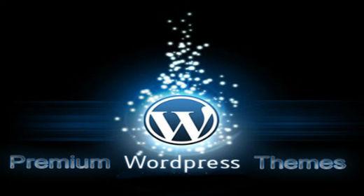 BuddyPress Themes