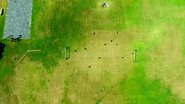 People Playing Soccer Top Down View By Taden