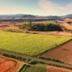 Aerial Drone Footage - Flying Over Fields - VideoHive Item for Sale