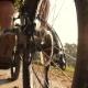 Man Rides a Bike Near Lake - VideoHive Item for Sale