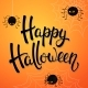 Halloween Greeting Card with Angry Spiders - GraphicRiver Item for Sale