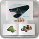 Minimal Photo Album - GraphicRiver Item for Sale