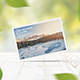8x5.5 Postcard / Greeting Card Mock-Up - GraphicRiver Item for Sale