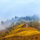 Autumnal hills in morning fog. - PhotoDune Item for Sale