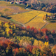 Autumnal colors of Italy. - PhotoDune Item for Sale