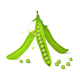 Green Pea Pods - GraphicRiver Item for Sale