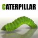 Caterpillar - 3DOcean Item for Sale