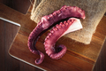Delicious coocked Octopus - PhotoDune Item for Sale