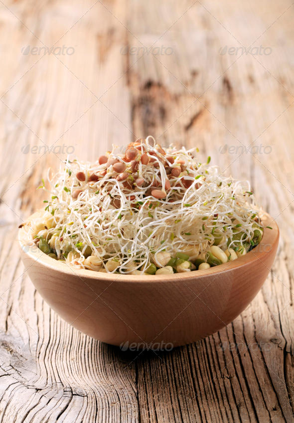 Mung beans and lentil sprouts - Stock Photo - Images