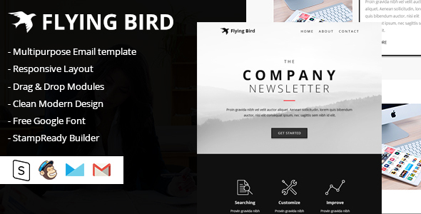 Flying Bird Multipurpose Email Template - Email Templates Marketing