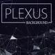 Dark Plexus Network Background - VideoHive Item for Sale
