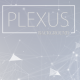 Clean Plexus Network Background - VideoHive Item for Sale