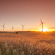 Wind turbines in Crop Fields at Sunset - VideoHive Item for Sale