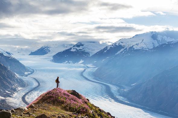 Salmon glacier - Stock Photo - Images