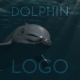 Dolphin Logo - VideoHive Item for Sale