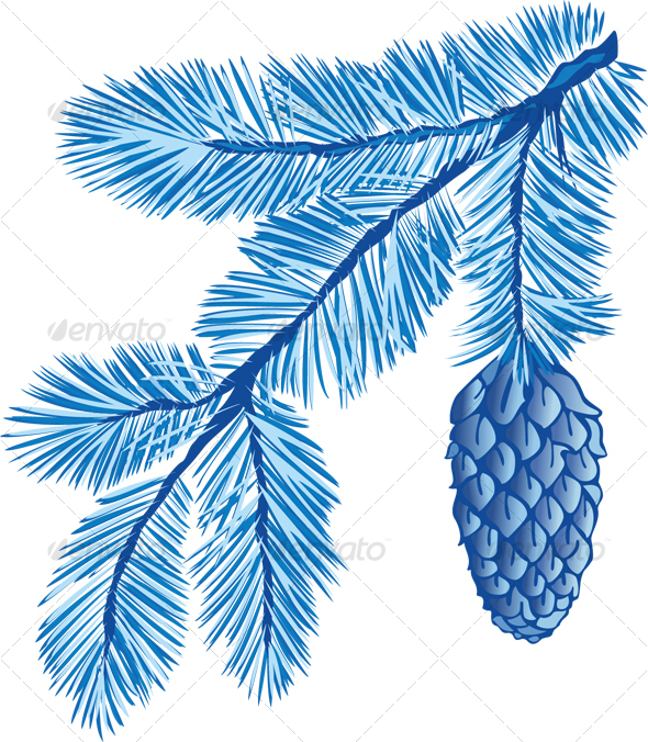 blue branch of fir-tree - Christmas Seasons/Holidays