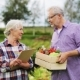 Senior Couple With Box Of Vegetables On Farm - VideoHive Item for Sale