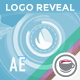 Logo Reveal With Elements Of Infographics - VideoHive Item for Sale