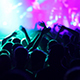 Crowd Hands Up In Concert - VideoHive Item for Sale