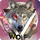 Wolf Night Flyer - GraphicRiver Item for Sale