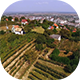 Vineyards Over The City - VideoHive Item for Sale