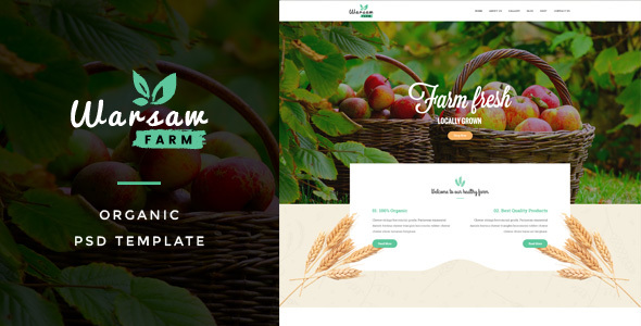 Warsaw : Organic Fruits & Vegetables PSD Template