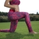 Sporty Woman Doing Hip Flexor Stretch In The Park - VideoHive Item for Sale