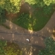 Aerial Video Newlyweds Are Circling In The Dance Through The Trees - VideoHive Item for Sale