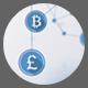 Plexus Currencies Network Ver.1 - 2 Pack - VideoHive Item for Sale
