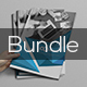 Bi Fold Brochure Bundle 2 in 1 - GraphicRiver Item for Sale